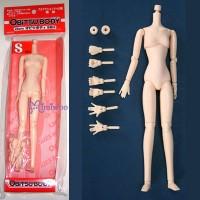 23BD-F02N Obitsu 23cm Girl Dollfie blythe Body SBH-S 02 Natural