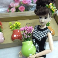 1/6 Bjd Momoko Blythe Mini Plant with Flower Pot 4pcs set YC0063