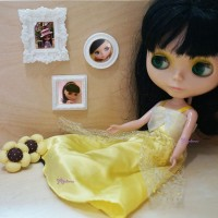 Blythe Momoko 1/6 Bjd Miniature Mini Resin Photo Frame YC0065