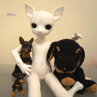 Mimi x Hujoo 28cm Dog Bjd Body Albu Min Pin Doll White ALBU-WHE